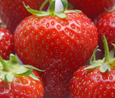StrawberriesExtremeCloseupBG.jpg